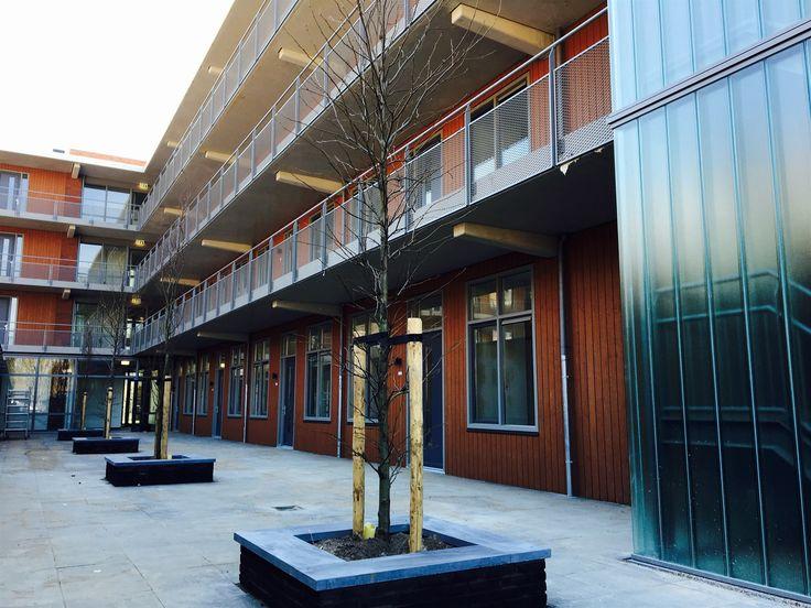 61 appartementen   Nieuwegein   Utiliteitsbouw   Plegt-Vos   In opdracht van Driestar BV realiseert Plegt-Vos in het oude centrum van Jutphaas te Nieuwegein 61 luxe drie-kamer appartementen met een oppervlakte variërend van 73 tot 80 m². De appartementen zijn verdeeld over 4 bouwlagen en bestemd voor de verhuur in de vrije sector.