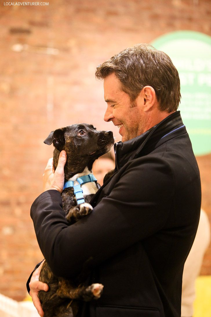 Scott Foley + Puppy Adoptions