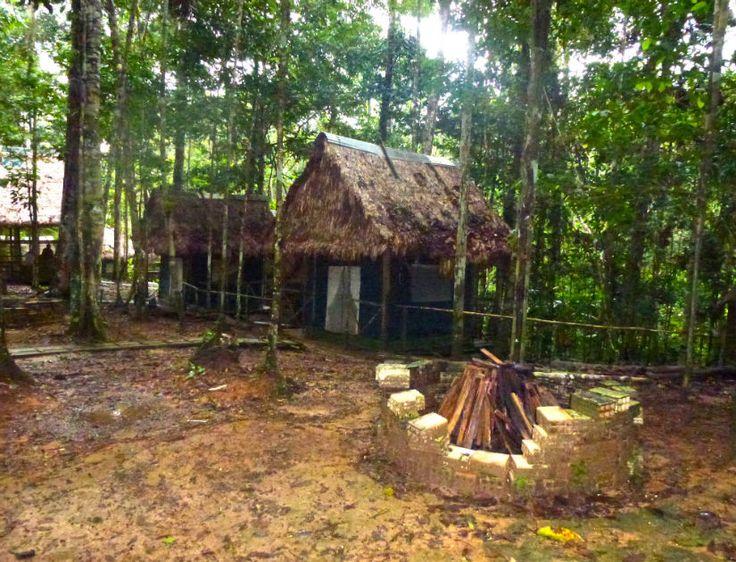 The Kapok Camp. #AtoZChallenge K: Kapok  #AmazonAdventure