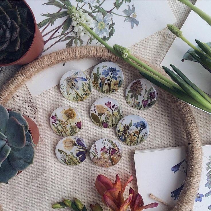 810 отметок «Нравится», 6 комментариев — Банки На Любой Вкус! (@bottlelove) в Instagram: «Овощи и фрукты зеленого цвета оказывают на наш организм лечебное воздействие. Практически все они…»
