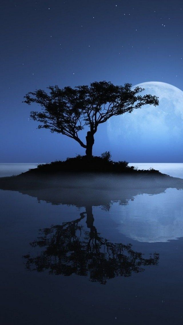 Rising Full Moon   Amazing Pictures - Amazing Pictures, Images, Photography from Travels All Aronud the World