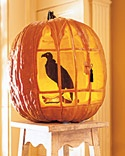 Tutorial- how to make a vulture in a cage out of two pumpkins. Thank you Martha Stewart.