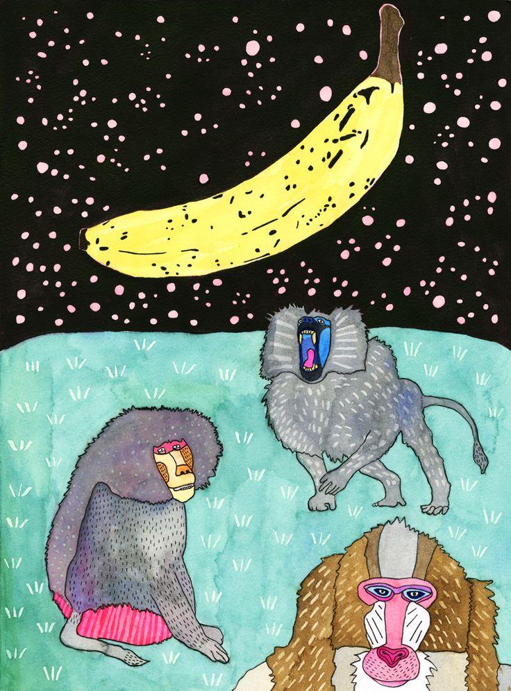 Babouins et banane spaciale