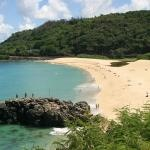 Day trips from Honolulu (North Shore, Windward and Leeward Coasts, Kailua, etc.)