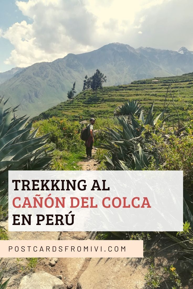 A complete guide for hiking the Colca Canyon on your own. How to get to Colca from Arequipa, where to stay and useful tips. Tourist Office, Travel Style, Travel Blog, Day Tours, Hotel Reviews, South America, Peru, Scenery, Places To Visit