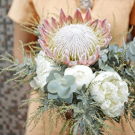 Protea Wedding Flowers: 17 Best Images About Native Wedding Flowers On Pinterest
