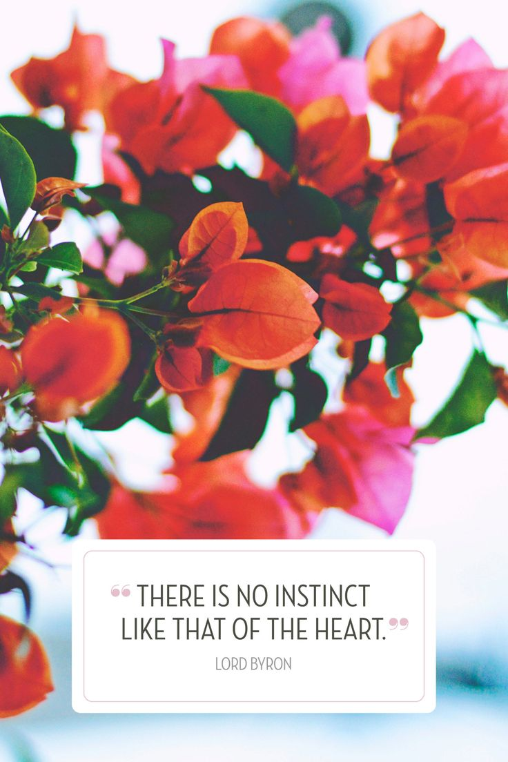 193 best Valentine's Day images on Pinterest   Celebrations ...