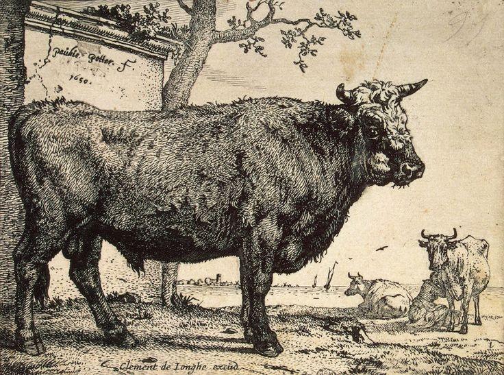 Animal Art Prints | Bull - Paulus Potter