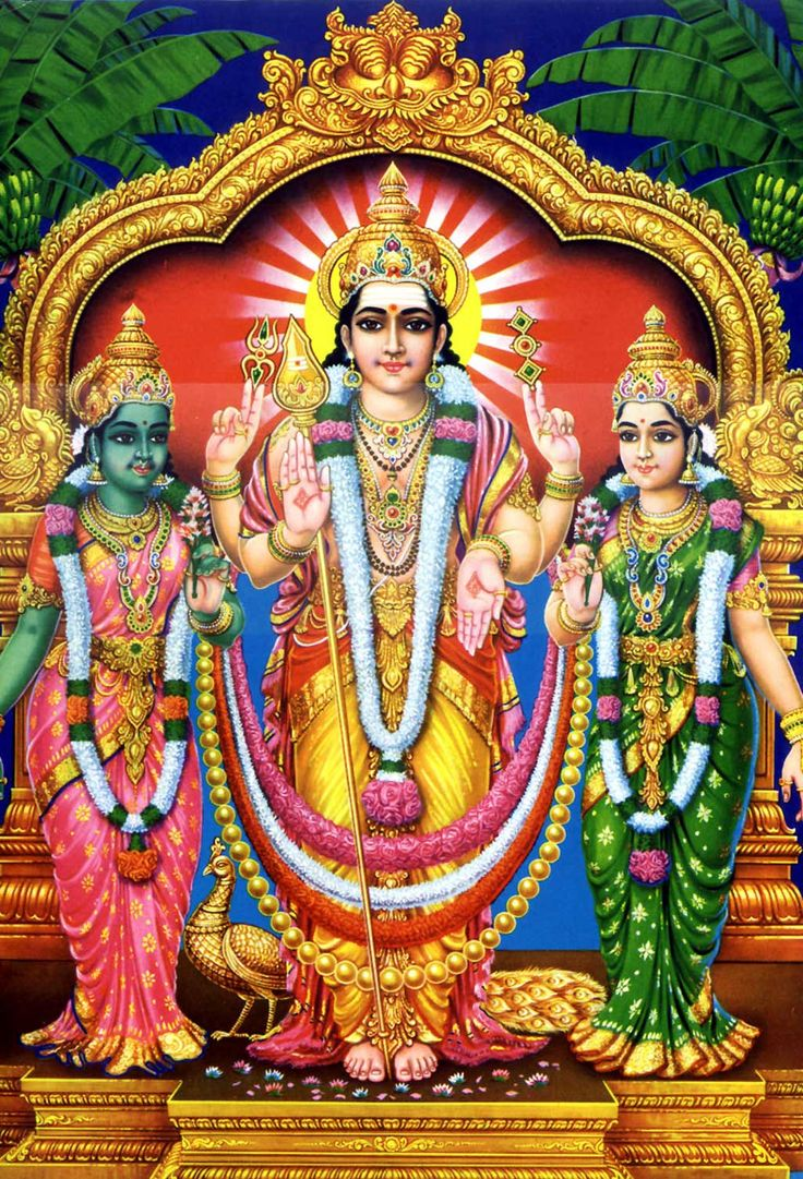 Kartikeya had 2 wife's. He married Valli by love and married Deivayanai by winning the war held at Tiruchendur.