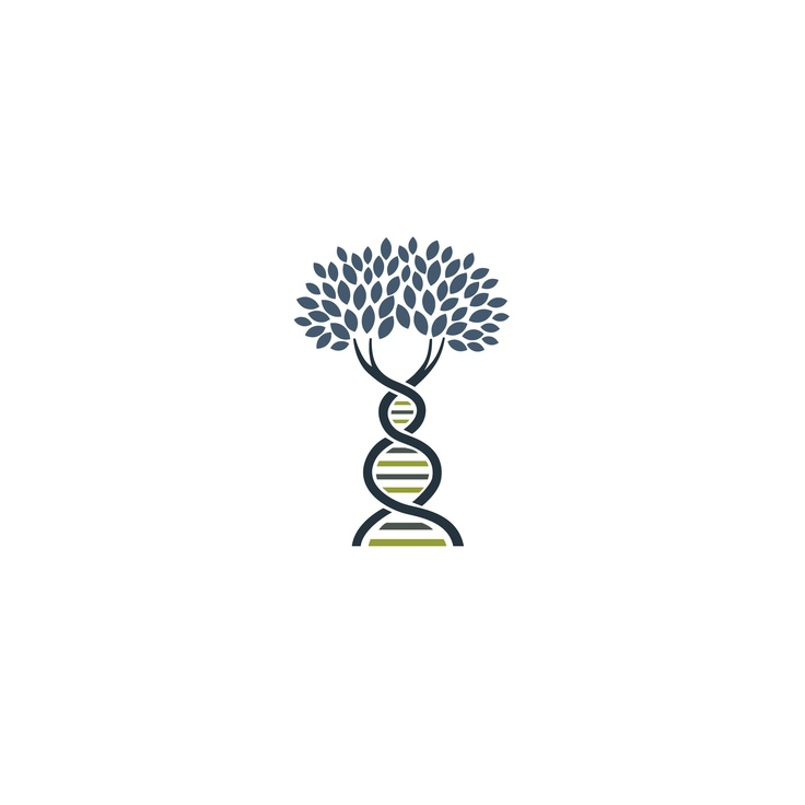 Orchid Cellmark Paternity Testing logo, tree, DNA