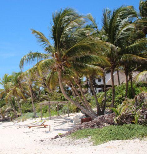 Insel Cozumel, Mexiko!!