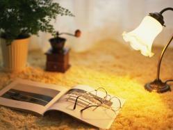 La literatura es una especie de luz intelectual que, a semejanza de la luz del sol, puede permitirnos a veces ver lo que no nos agrada.