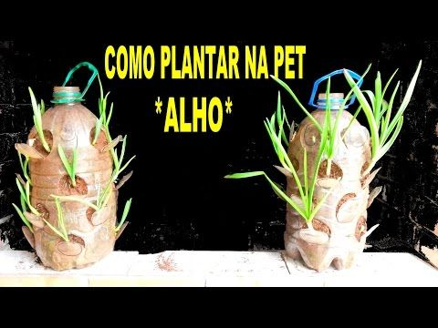 Assine o canal e compartilhe.A Flora Méri do Brasil agradece! Venda de produtos em nossa loja Flora Méri do Brasil www.meridobrasil.com.br Em Piracicaba/SP e...