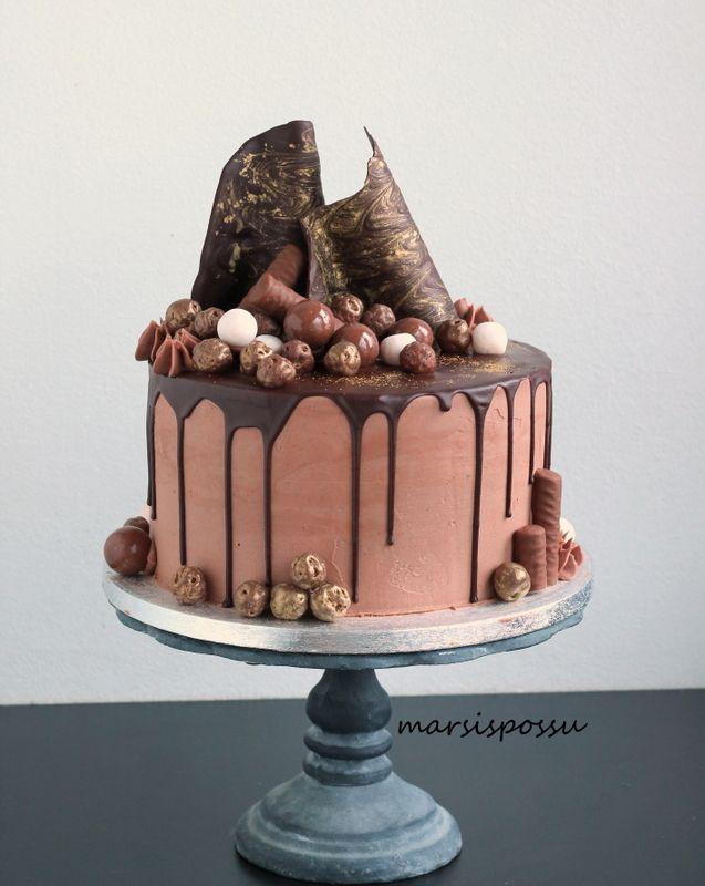 Marsispossu: Synttäreiden suklaakakku, Chocolate cake