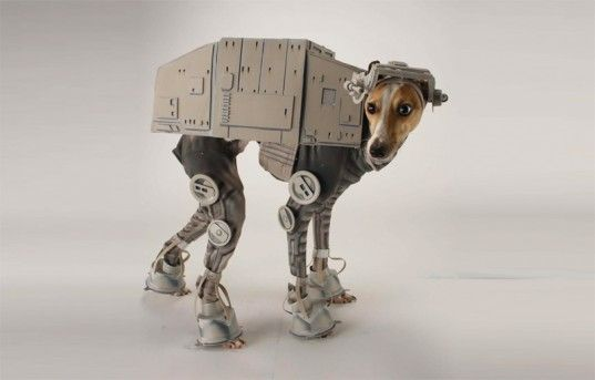 at at dog costume, star wars costumes, katie mello, The Empire Strikes Back, LAIKA/house, All Terrain Armored Transport, Halloween, Halloween Costumes, Dog Halloween Costumes