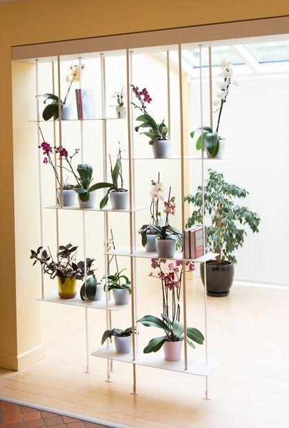 Une étonnante étagère suspendue met en valeur une collection d'orchidées et sépare deux pièces en formant un claustra délicat