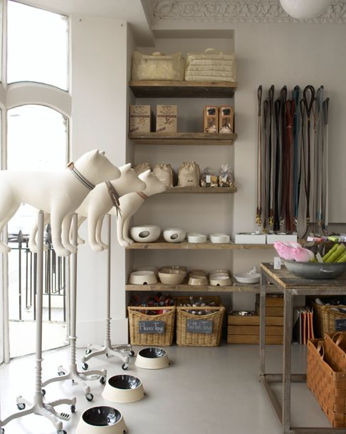Gorgeous grey colour palette - interior pet shop