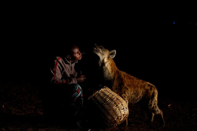 Abbas Yusuf, 23, known as Hyena Man, feeds a hyena on the outskirts of Harar, Ethiopia, February 23, 2017. Hyenas roam the streets of the ancient walled city of Harar in eastern Ethiopia every night, seeking scraps of meat to drag to the nearby caves. But residents are not afraid. A family chosen by the town to feed the animals is not daunted by the task despite the dangers that are associated with coming into close quarters with such wild animals. Abbas Yusuf, known as Hyena Man, learnt to…