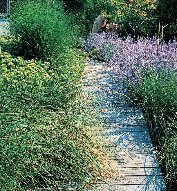 Деревянная дорожка-палуба, приподнятая над землей, всегда останется сухой. В этом саду в США она сделана из кедра.