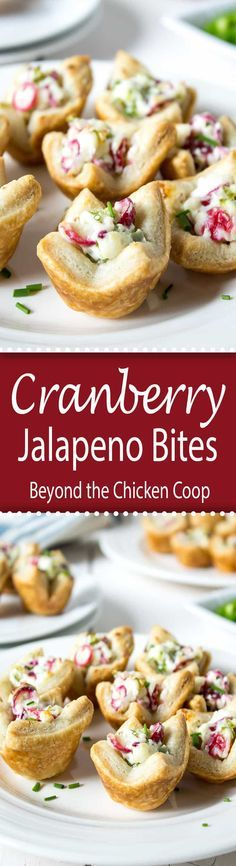 These cranberry jalapeno bites are a bit tart from the cranberries and a bit spicy from the jalapenos - a perfect combination.  via @Beyondthecoop