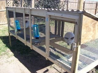 Gardening-4-Life: My Newly Built Rabbit Hutches- article has link to hutch plans