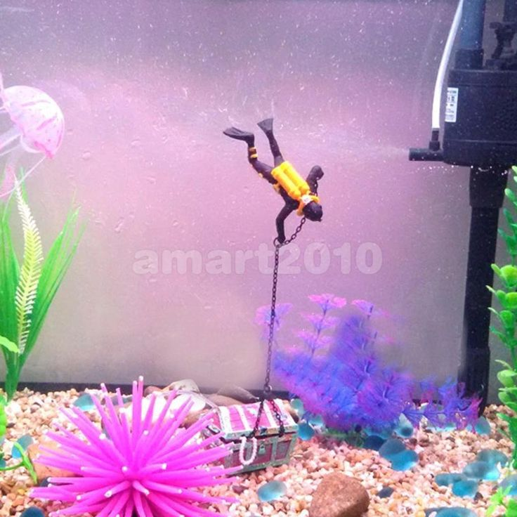 52 best fish and fish tank equitment images on Pinterest | Fish ...