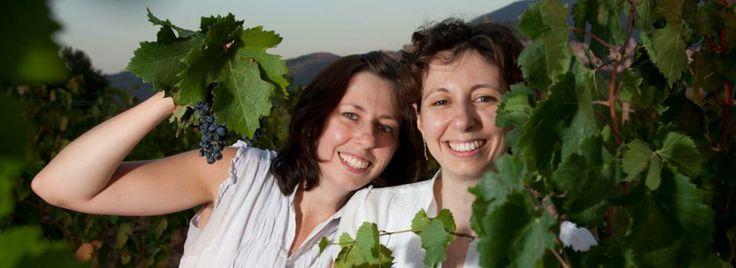 Agnese, Irene and Merlot grape