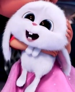 Snowball From The Secret Life Of Pets