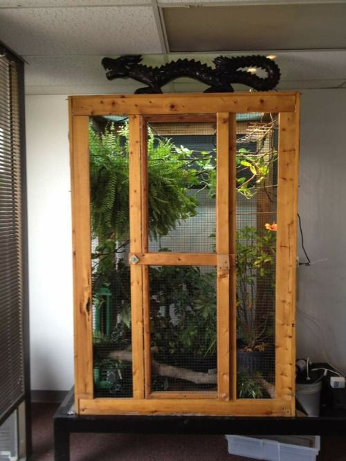 iguana cage design - Google Search