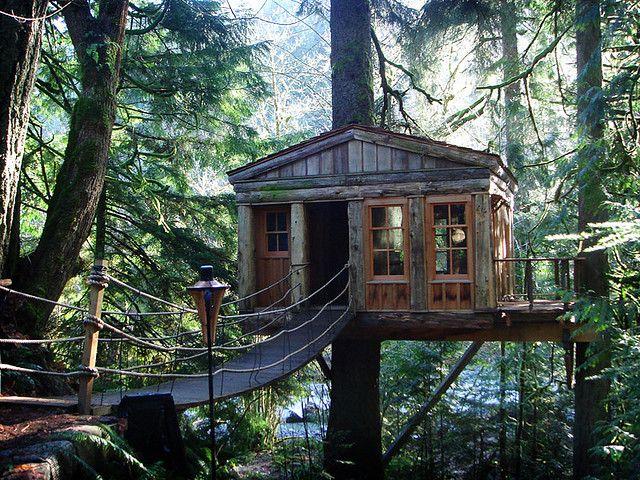 A la weekend // Tree house, Washington
