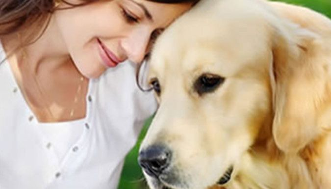 Buy Animal Communications Online Course for just £29.00 Learn about the human and pet relationship with the animal Communications Course      Ideal for those working in an animal industry of pet owners looking to expand their understanding      Includes interactive quiz sections and multiple choice questions to test your knowledge      See Full Details for course syllabus      Receive a Level...