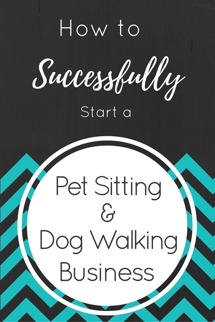 best ideas about dog walking camping gadgets 17 best ideas about dog walking camping gadgets dog care and dog training