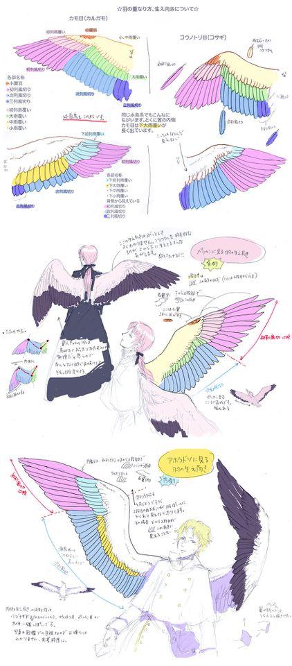 「改:鳥の翼のつくり(詳細度up」/「ダリア」の漫画 [pixiv]