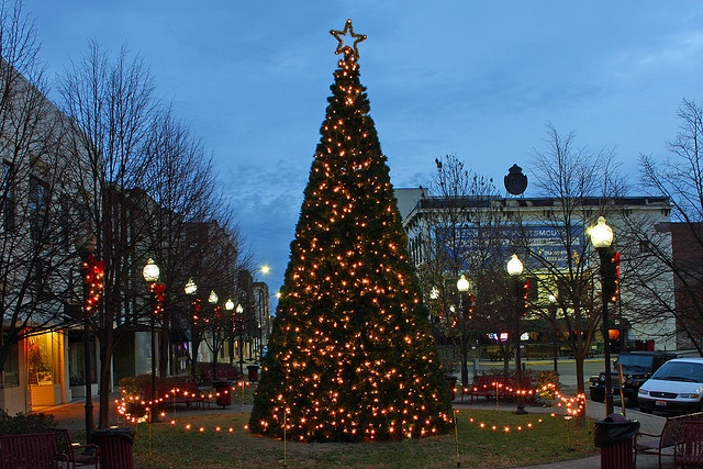 Christmas Tree Collection Portsmouth : Best images about portsmouth on underground
