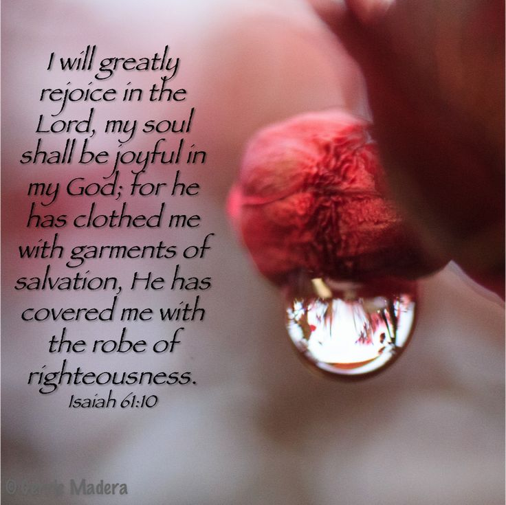 Isaiah 61:10 Isaiah 61:10 He has clothed me with garments of salvation & covered me with the robe of righteousness