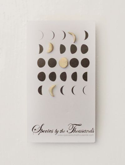 Moon Phase Stud Earrings | Erica Bradbury | Species By The Thousands