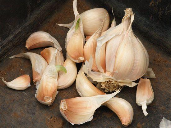 Food irradiation? Know your garlic