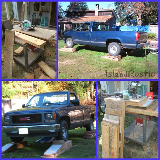 Island Rustic: Taz proofing, fall colors and projects...