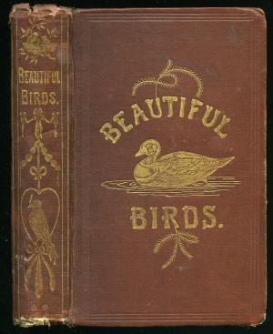 Beautiful Birds Described: Edited from the Manuscript of John Cotton. [Volume II only].  Robert Tyas, 1868.