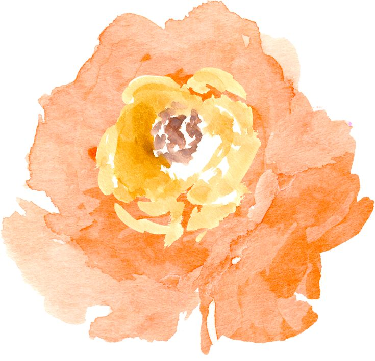 FPTFY_Free-Watercolor-Flowers_THJ_3.png (1330×1283)