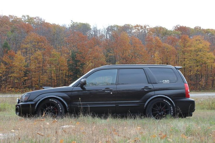 78+ images about Fozzy Project on Pinterest | F(x), Subaru ...  78+ images abou...