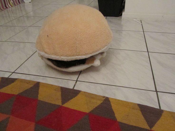 Cat burger 6
