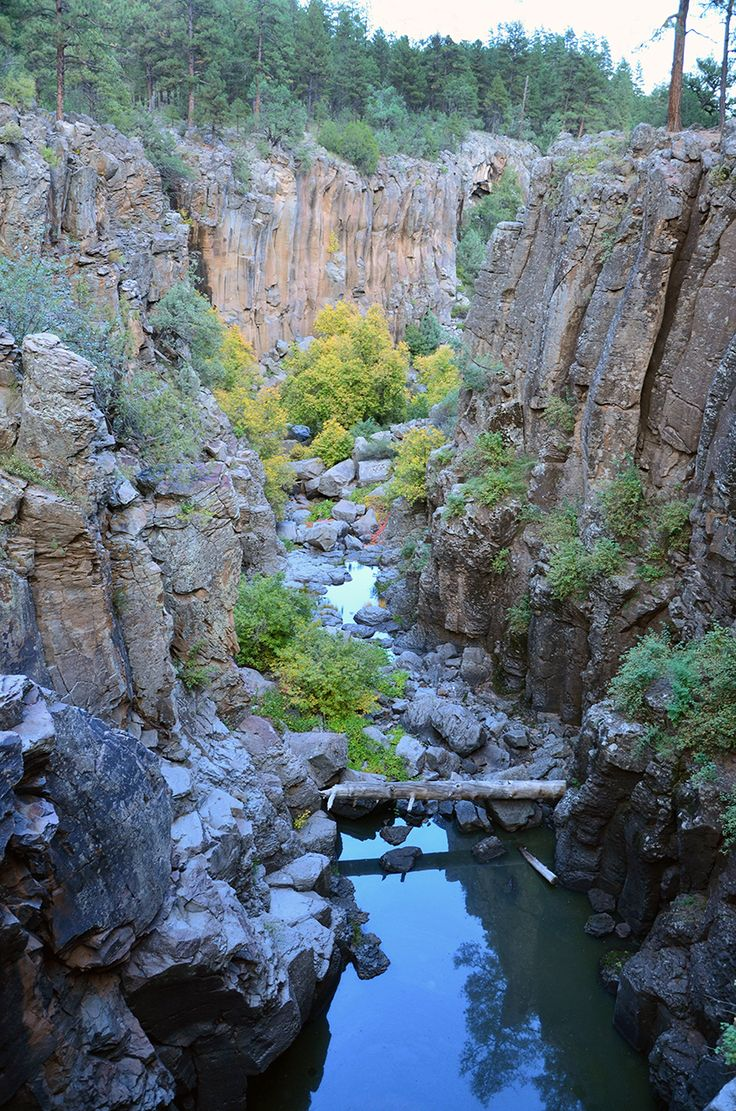 Kaibab National Forest AZ: no matter which district you choose to visit -- Williams, Tusayan, North Kaibab -- you will be blown away by the natural beauty, diverse flora and fauna Sycamore Canyon Falls