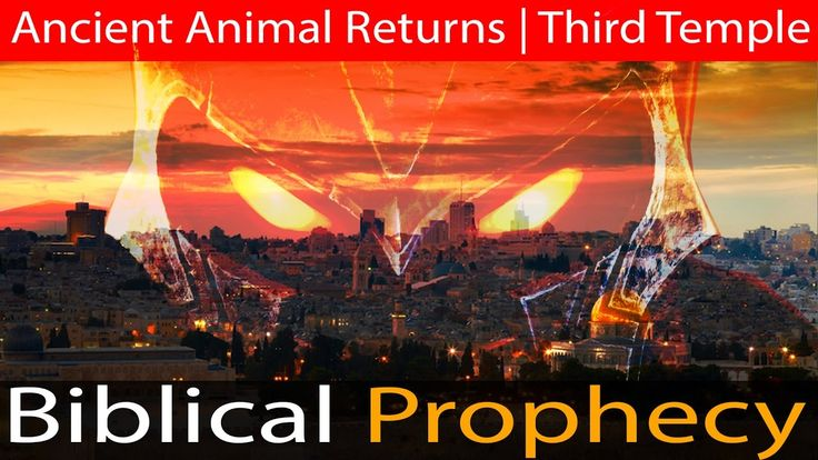 Israel in Prophecy | Revelation Fulfilled | An Ancient Animal Returns & ...