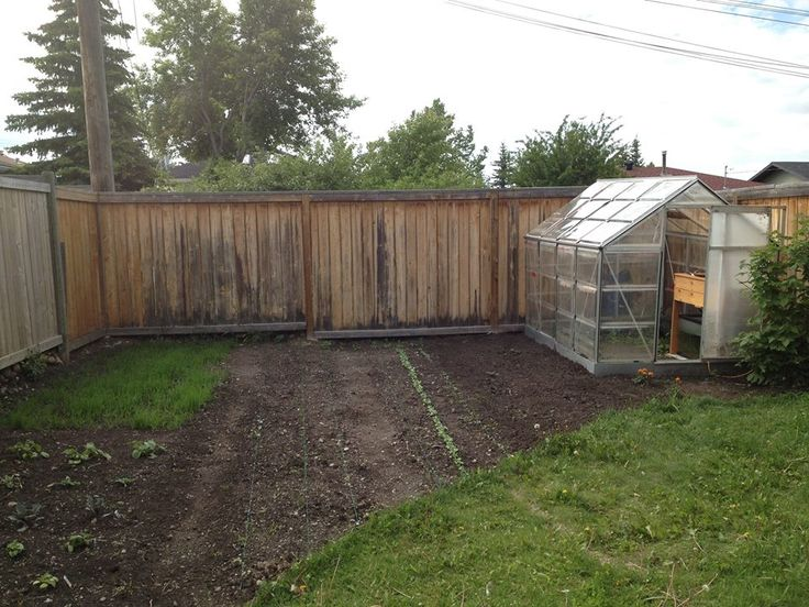 ABC's of Urban Farming - an interview with Jason Melenberg