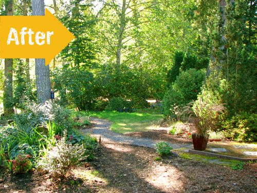 Garden Ideas Before And After 32 best before & after garden makeovers images on pinterest
