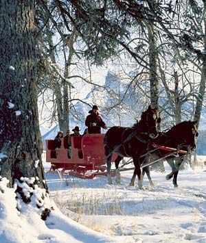 Banff, Alberta, Canada  I love the idea of spending December or January in a snow covered cabin and playing outside all day! It's a two-horse open sleigh! What old-fashioned fun! I smell chili and cinnamon rolls sitting in front of a wood fireplace...awe