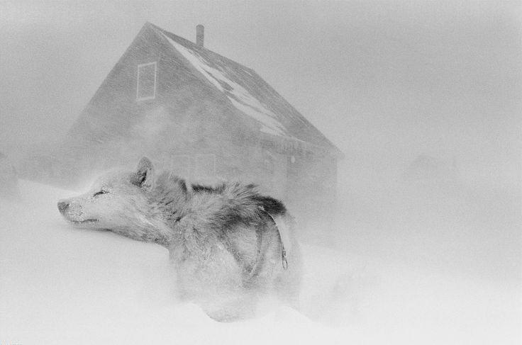 By Ragnar Axelsson