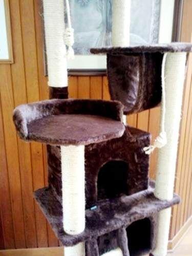 #Rascador, Arañador para Gatos Modelo Shey, #Mascotas - Tenemos muchos accesorios para tu #gato, solicita nuestro catálogo dando click en la imagen. Lima / Perú