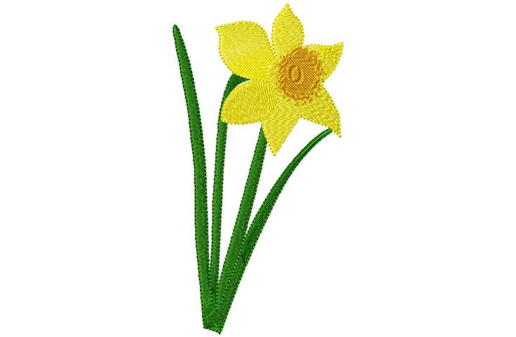 Daffodil Graphics   Daffodils Free Clip Art - ClipArt Best